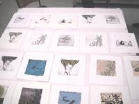 Drypoint Etching with Chine Colle workshop - some of the prints produced