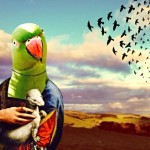 Green parrot with stoat - anthropomorphic iPhoneography image - Kerry Spokes